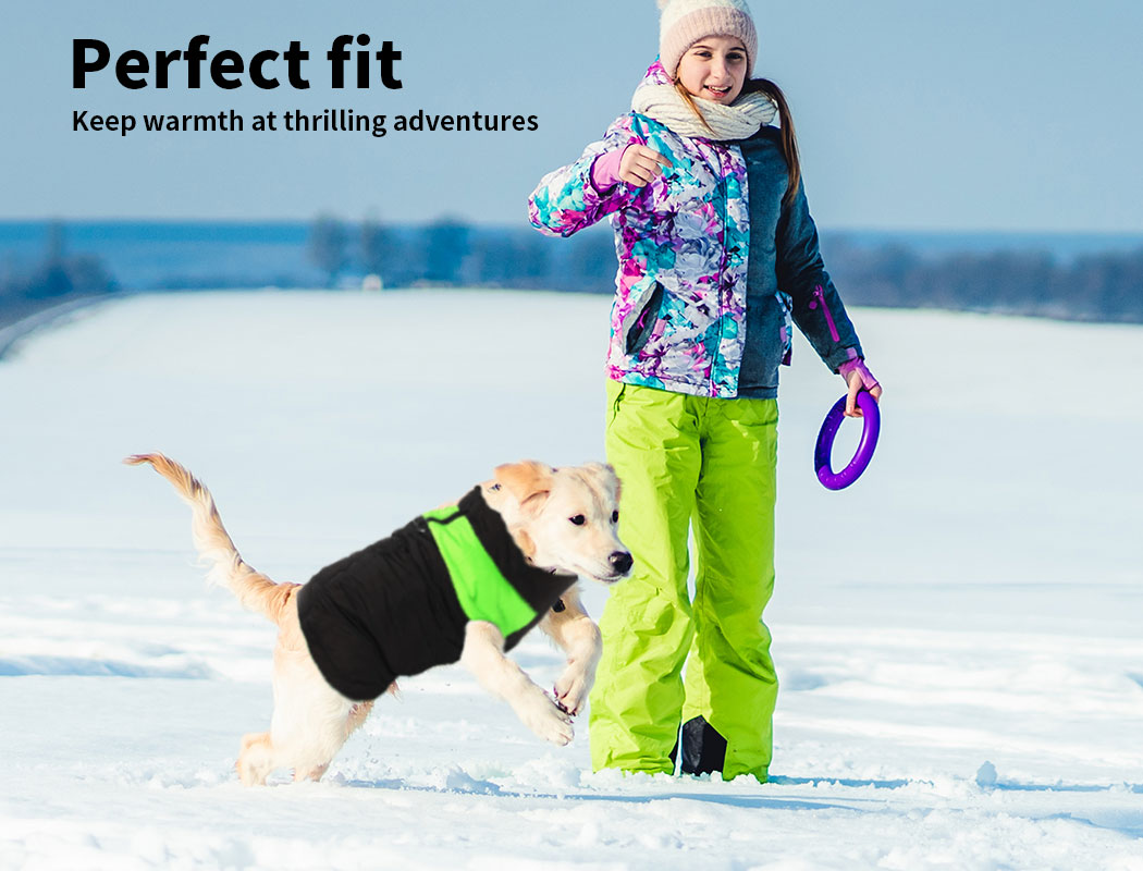 thumbnail 18 - PaWz Dog Jacket Large Pet Jackets Coat Waterproof Clothes Winter Vest Green