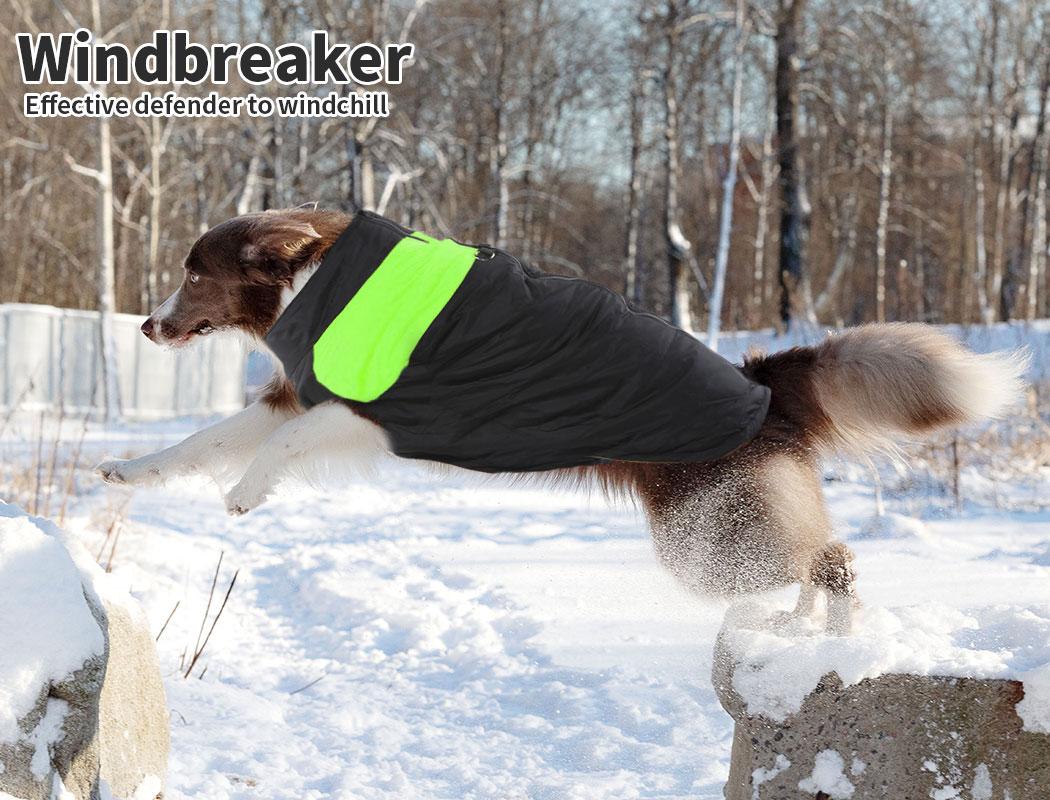 thumbnail 13 - PaWz Dog Jacket Large Pet Jackets Coat Waterproof Clothes Winter Vest Green