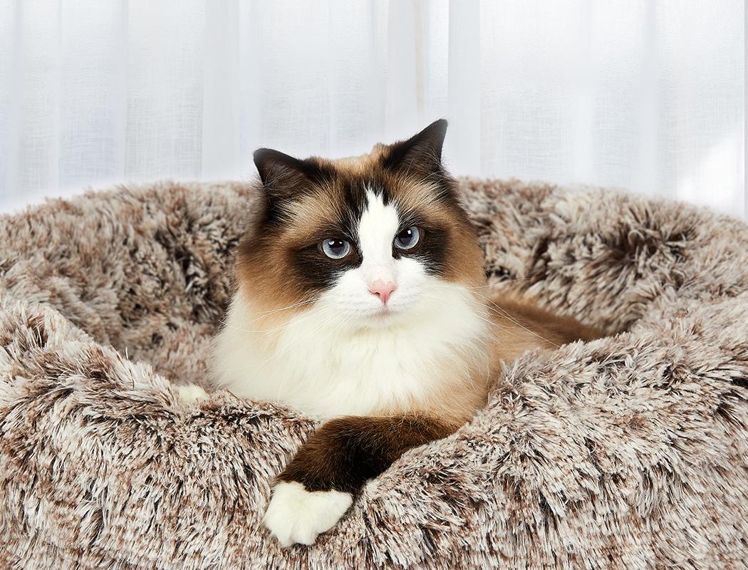 thumbnail 33 - PaWz Jumbo Pet Bed Cat Dog Donut Nest Calming Plush Kennel Washable Sleeping